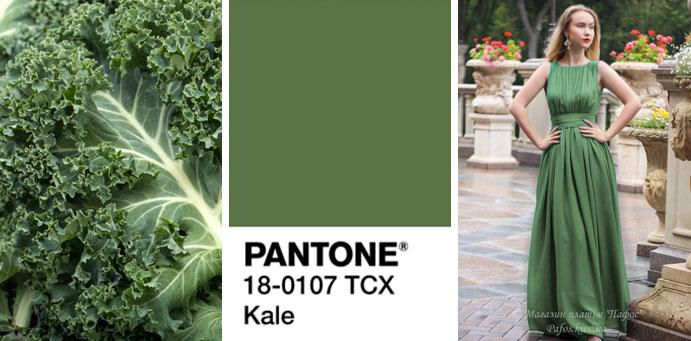 Фото цвета кудрявой капусты пантон для платьев от магазина женской одежды Пафос