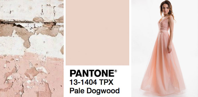 Фото цвета бледный кизил пантон для платьев от магазина женской одежды Пафос